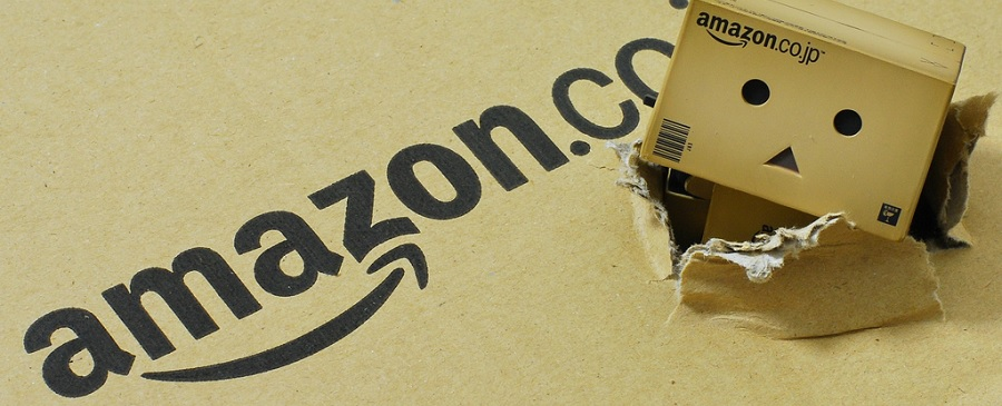 percentuale amazon su vendite